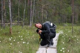 Helvetinjarvi National Park