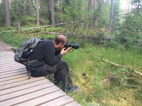 Focus, focus, focus... - Helvetinjarvi National Park