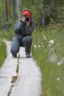 Isabel inspired taking pictures - Helvetinjarvi National Park