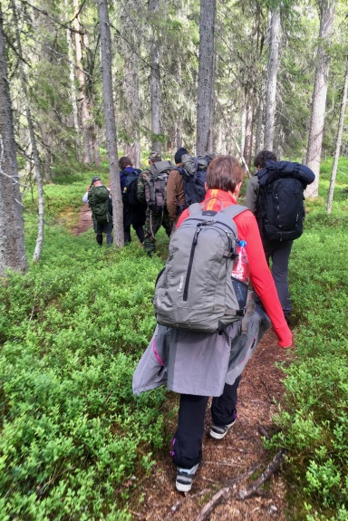 On the way to the bear hide