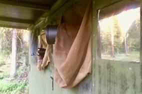 The Bear Hide