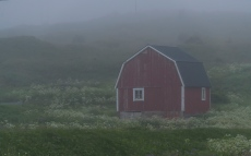 Misty evening in Hovden