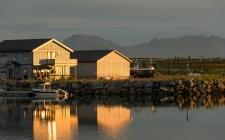 Laukvik Harbour