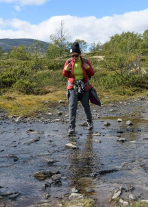Isabel crossing a stream at Dovrefjell NP