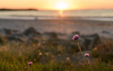 Sunset at Karmoy beach