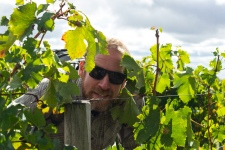 Chritian lost in the Vineyards