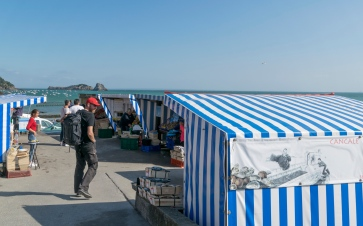 Christian strolling through Cancale´s oyster market