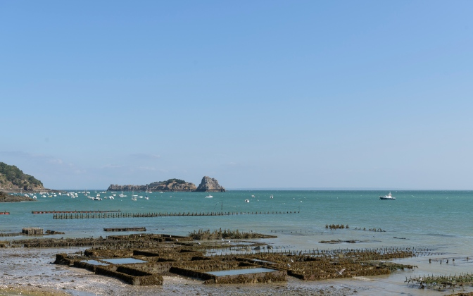 Oyster farm in Cancale