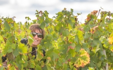 Isabel lost in the Vineyards