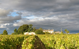Winery Chateau Arnaud de Jacquemeau