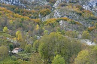 Mountains surrounding Cain