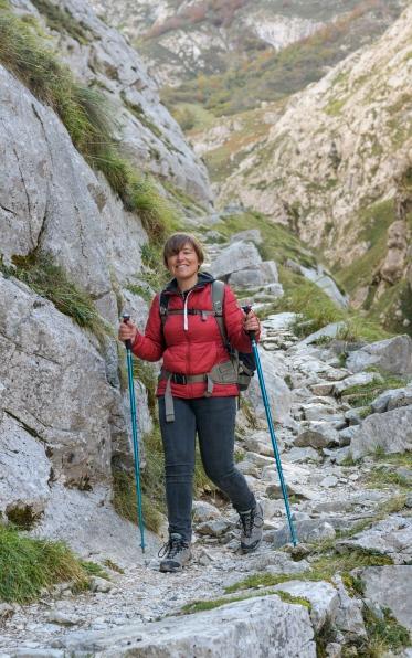 Descent from Bulnes