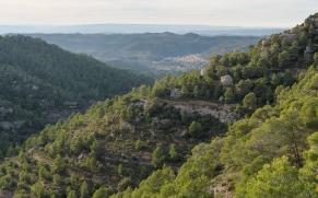 Park Natural Montsant