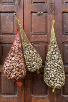 Snails for Sale - Fez Souk