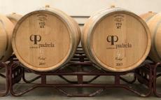 Wine cellar at Quinta da Padrela