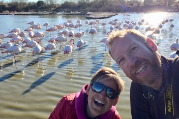 Happy to see soooo many Flamingos