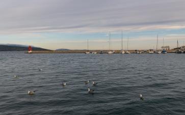 Krk harbor